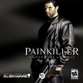 Painkiller (PC) kody